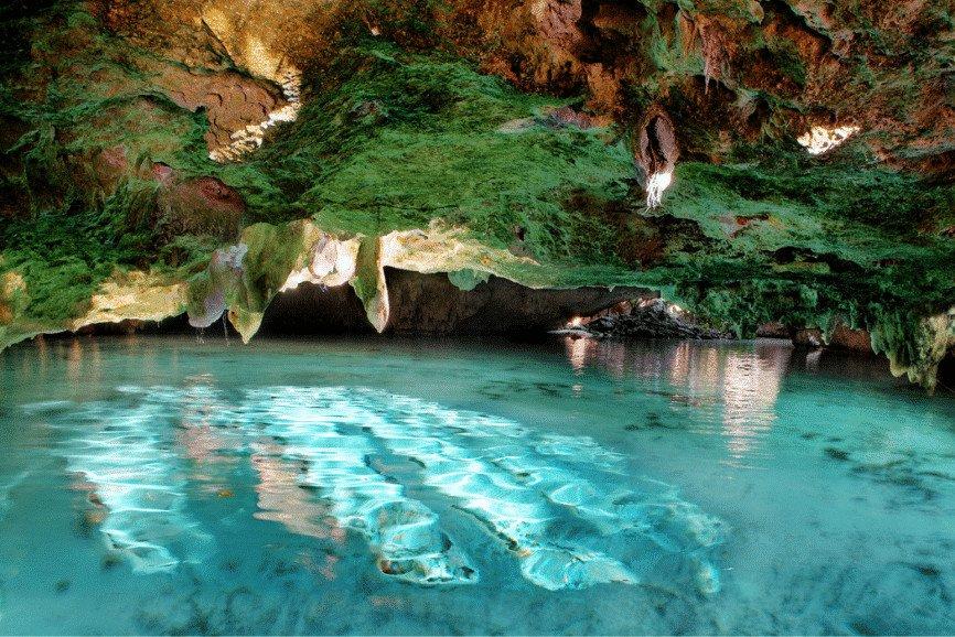 Gran Cenote, Yucatan. Best Cenotes In Tulum.