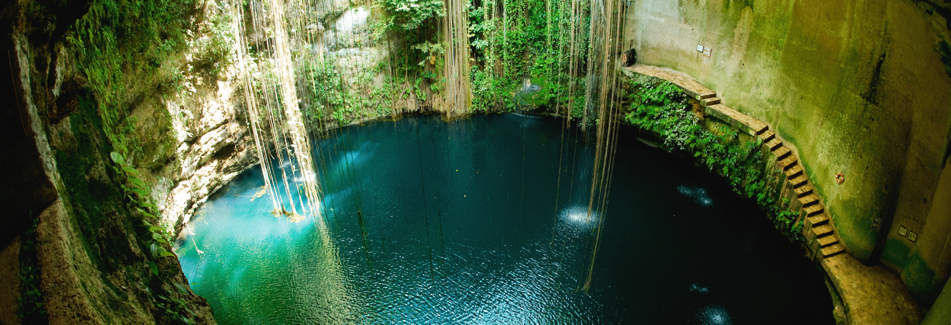Best cenotes in yucatan. Best cenotes in Tulum.