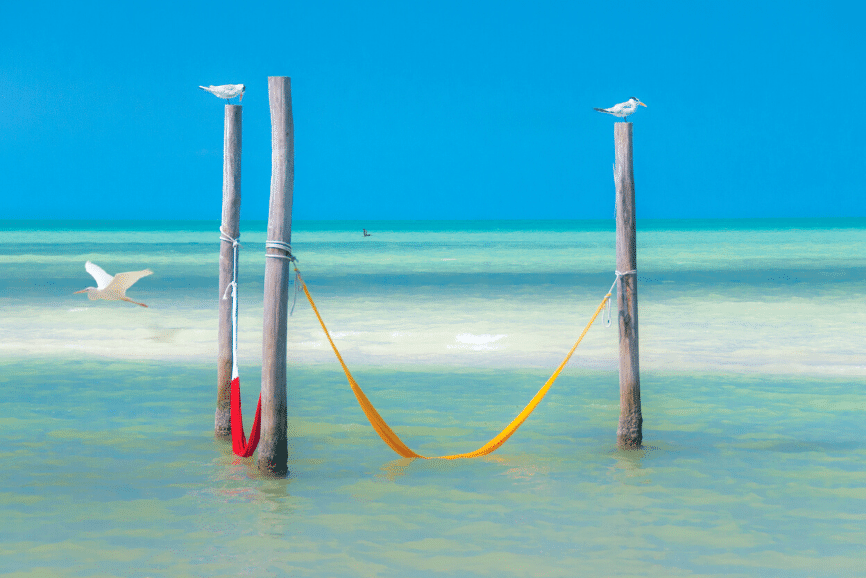 Famous Holbox sea hammocks. One of the best things to do in holbox mexico