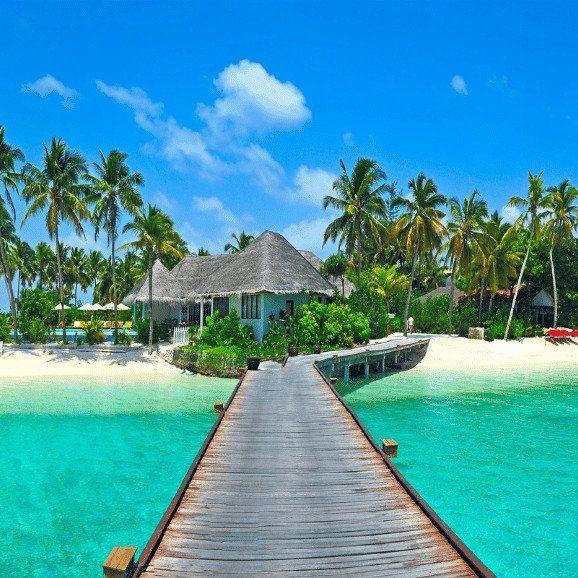 Island Life Mexico