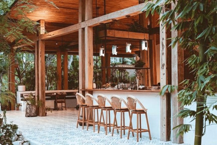 Verdant. The best restaurants in Tulum