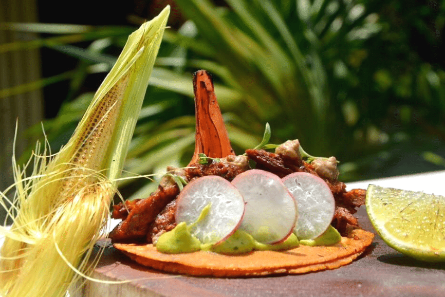 Milpa, one of the best restaurants in Holbox mexico